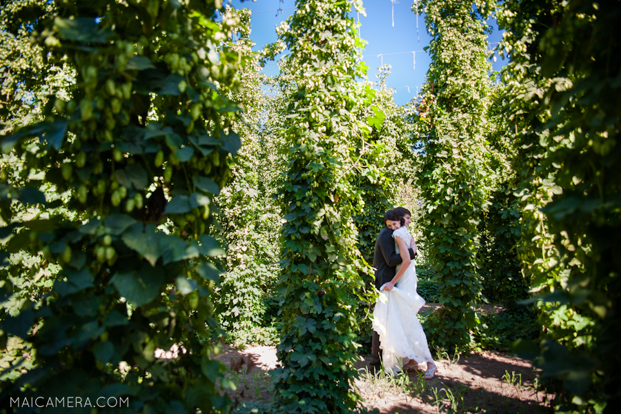 Rogue Farms Hop Yard Wedding by MaiCamera Photography