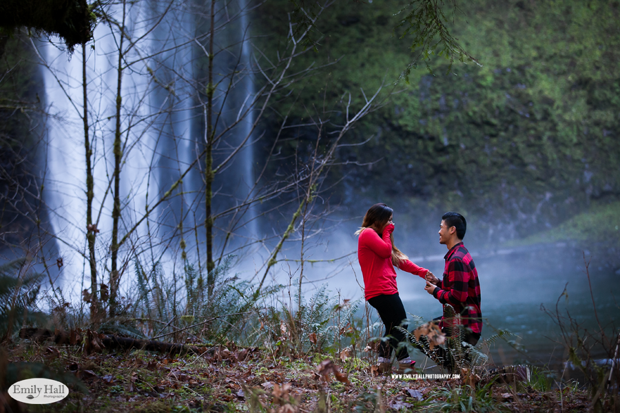 Emily-Hall-Photography---Silver-Falls-Proposal-3381