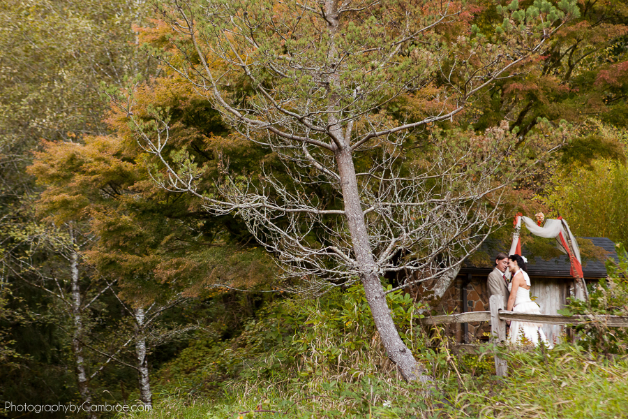 The bride and groom embrace for a quite moment while looking into the woods.