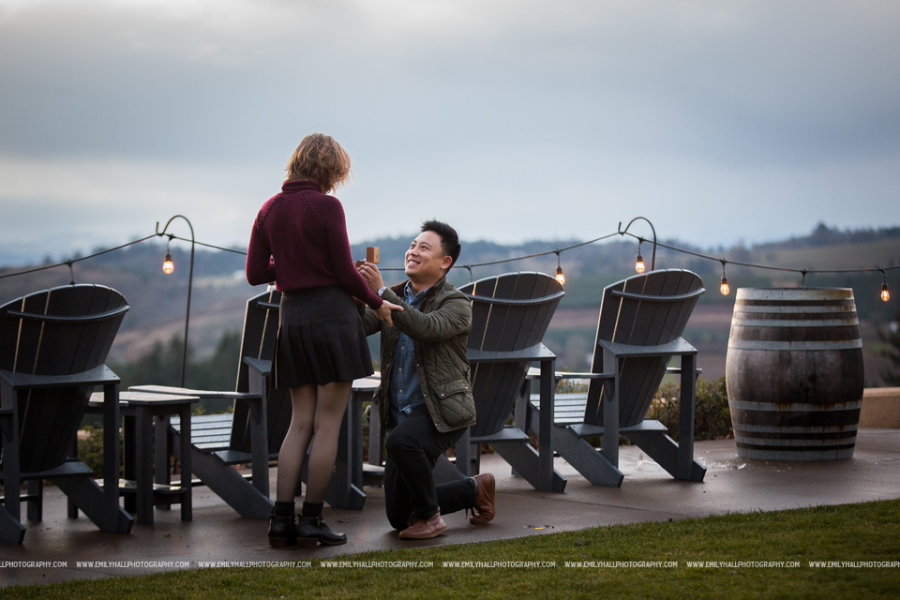 Willamette Valley Vineyards Proposal-6462 copy